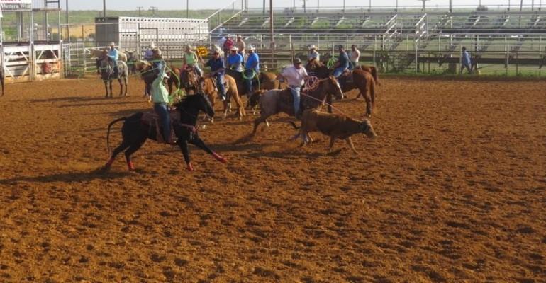 Laredo Roping